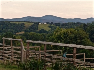 View From our Cottage in Virginia